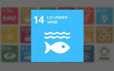 Verdensmål 14 Livet i havet