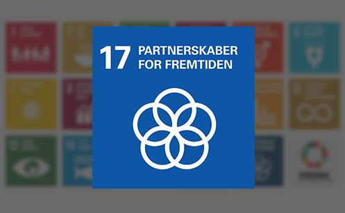 Verdensmål 17 Partnerskab for handling
